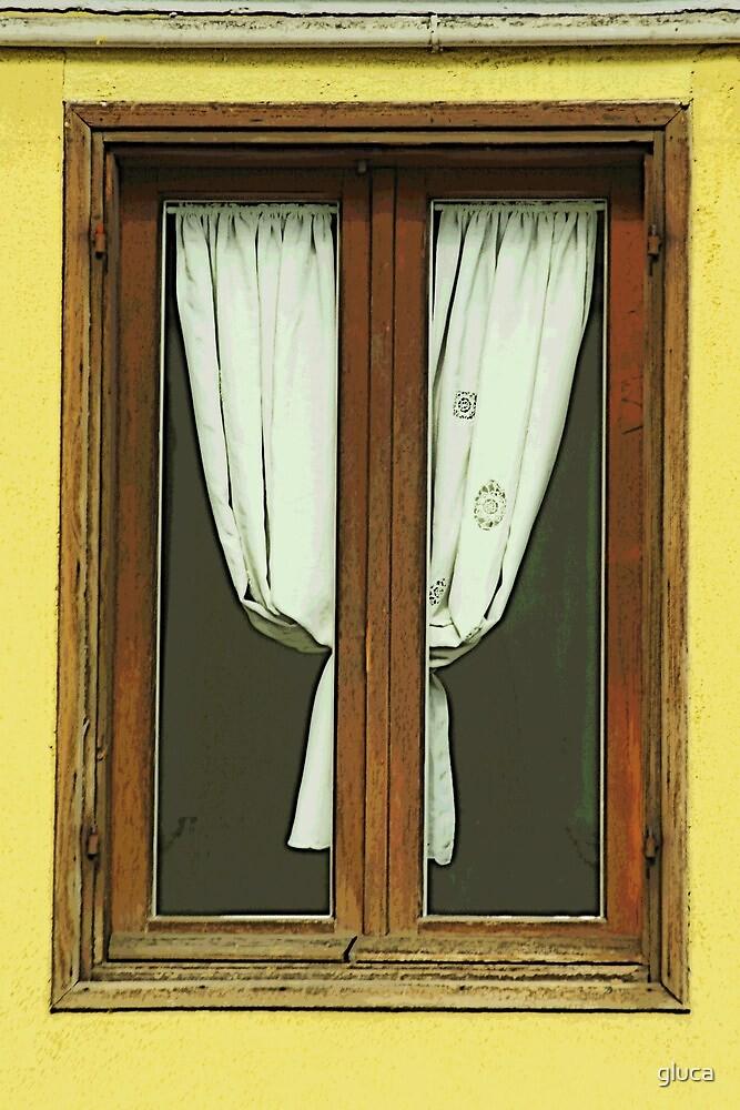 Window in Rome by gluca