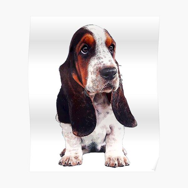 Basset Hound Cute Puppy Dog Poster