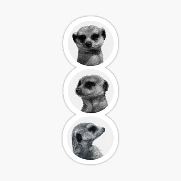 Meerkats! Sticker