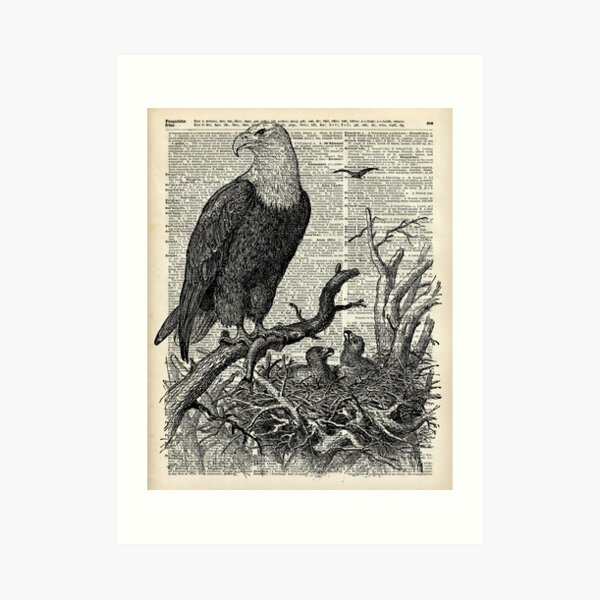 Vintage Crow Key Print Dictionary Page Wall Art Picture Bird Silhouette Animal