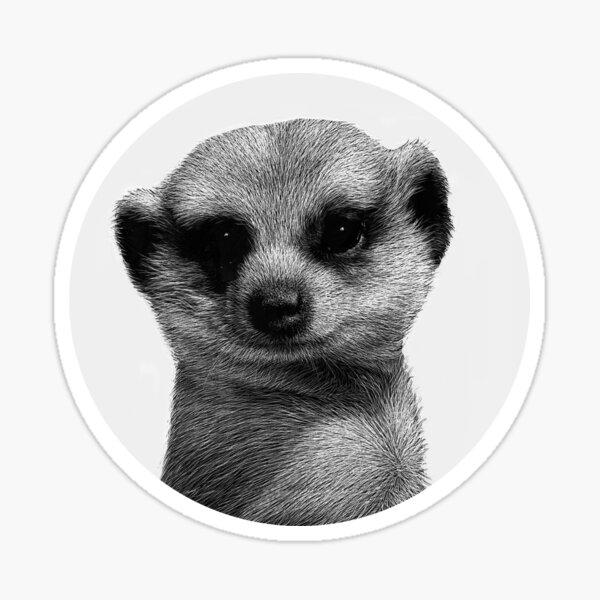 Karla, a meerkat Sticker