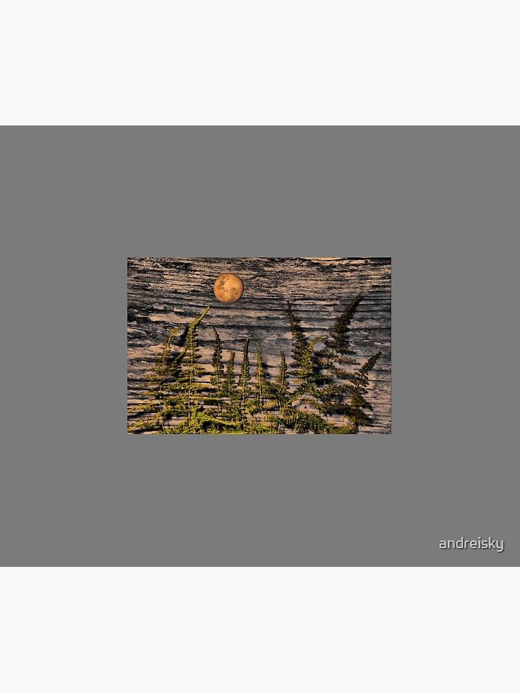 Harvest Moon by andreisky