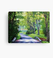 'Summer's Languid Path' Canvas Print