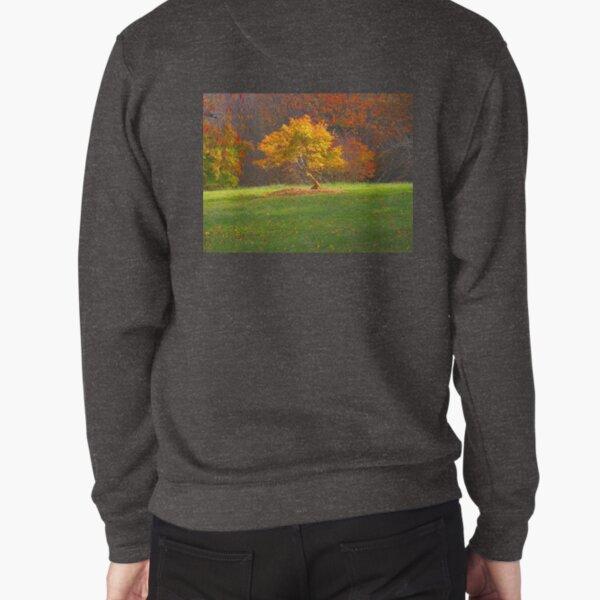Glow Pullover Sweatshirt