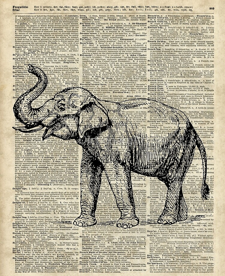 FOX ANIMAL ART PICTURE PRINT VINTAGE ANTIQUE DICTIONARY PAGE STYLE BOOK WALL OLD