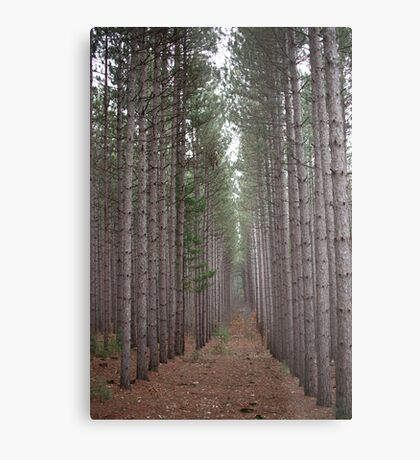Towering Beauty Metal Print