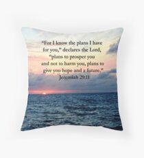INSPIRING JEREMIAH 29:11 PHOTO DESIGN Throw Pillow