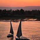 nile sunset.. by Michelle McMahon