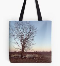 Old Orchard tree Tote Bag