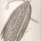 Sweet Corn on Cob by Vicki Lau