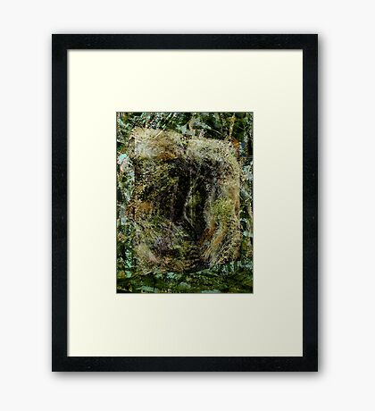 forest..... entrance-in, no exit-out Framed Print