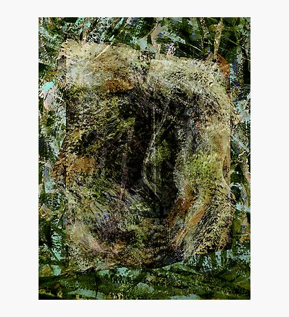 forest..... entrance-in, no exit-out Photographic Print