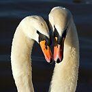 Love is.... by Steve  Liptrot
