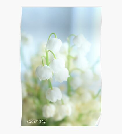 Tiny,white and fragrant Poster