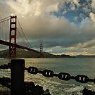 Under the Golden Gate by Leasha Hooker
