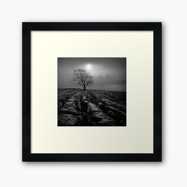 Malham Tree 01 - Yorkshire Dales, UK Framed Art Print