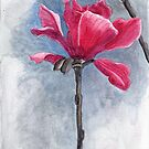 "Magnolia ""Vulcan"" by acquart"