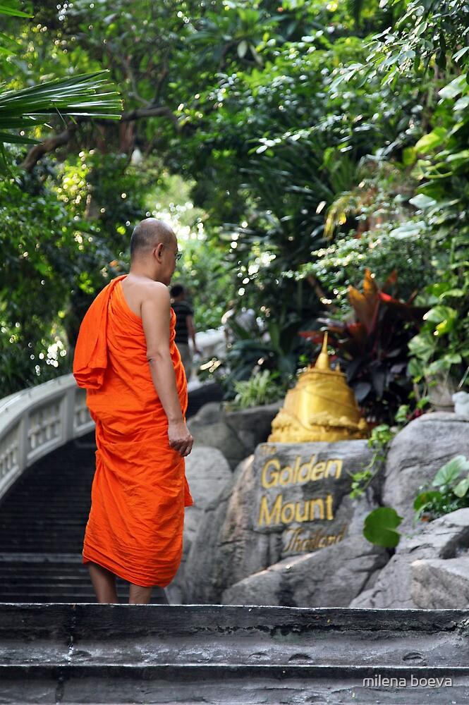 monk in bangkok by milena boeva