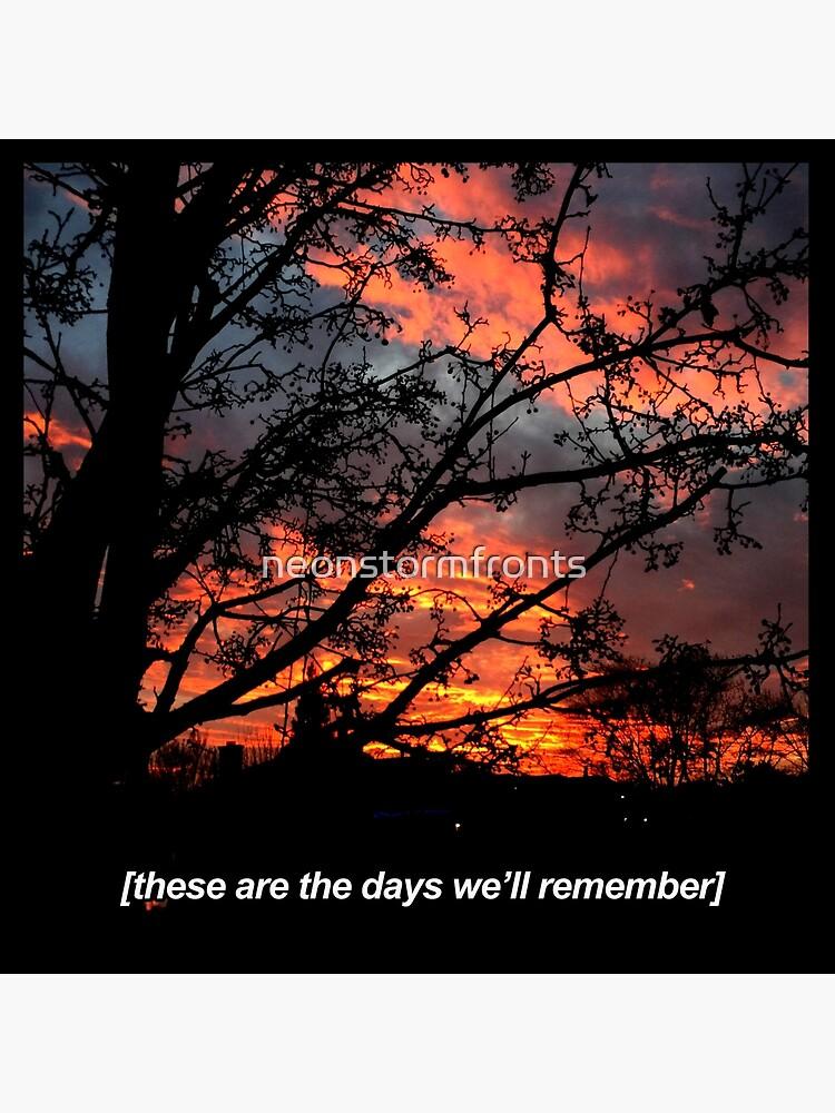 sunset tumblr vsco aesthetic retro vintage photography instagram art board print by neonstormfronts redbubble redbubble