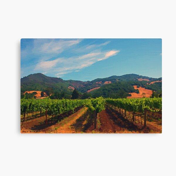 California Vineyard Canvas Print