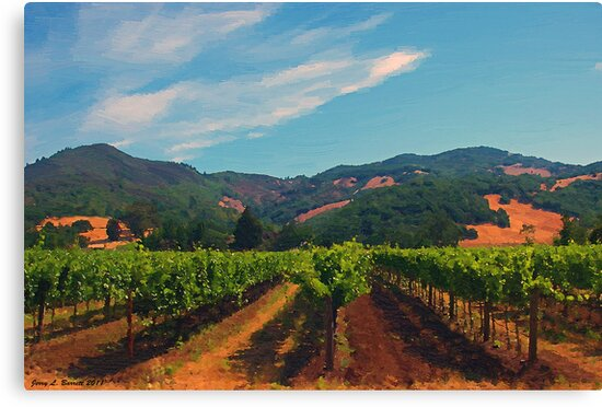 California Vineyard by artstoreroom