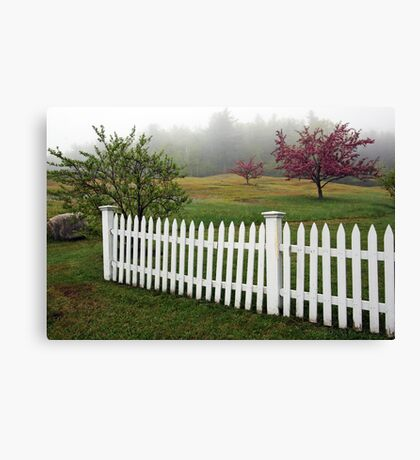 Morning Mist - Apple Blossoms and White Picket Fence Canvas Print
