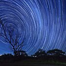 Startrails on a Moonless night by David de Groot