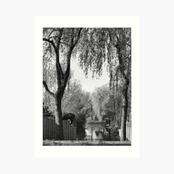 Behind the gardens Art Print