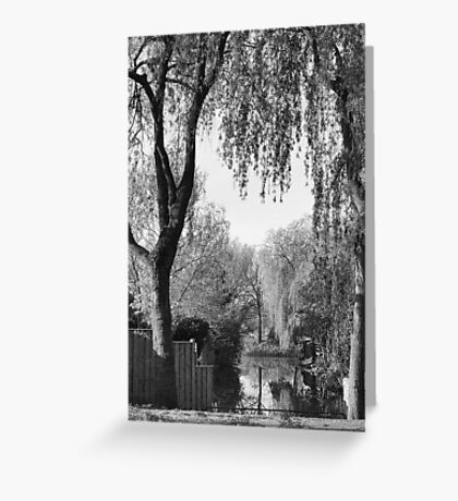 Behind the gardens Greeting Card