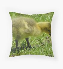 Making Discoveries Throw Pillow