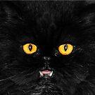 Killer Kitty by Kym Howard