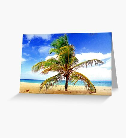 Palm Tree, San Juan, Puerto Rico Greeting Card