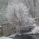 snow trees 2 by nancy dixon