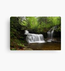 R. B. Ricketts Falls II Canvas Print