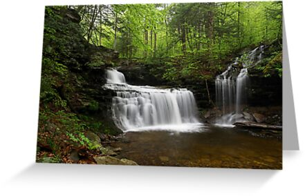 R. B. Ricketts Falls II by Tim Devine