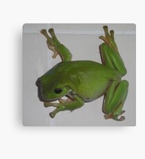 There's a Frog in my Shower. Canvas Print