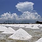 Salt Mounds by Dave Lloyd