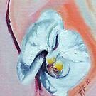 Orchid on peach  by Helen Imogen Field