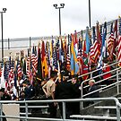 Flags and more Flags by Lorrie Davis