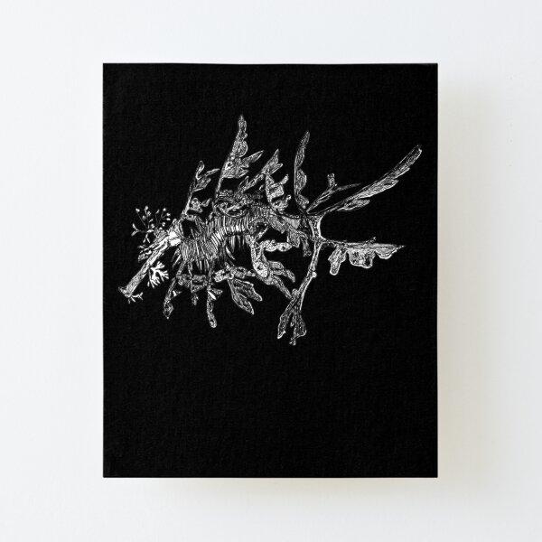 Jonesy the Leafy Sea Dragon on Black Canvas Mounted Print