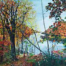 New England - the glories of the Fall by Helen Imogen Field