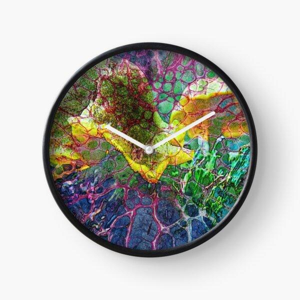 The Atlas Of Dreams - Color Plate 85 Clock