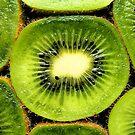 kiwi.. by Michelle McMahon