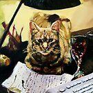 Writer's Cat  by Helen Imogen Field