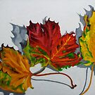 Cambridge color - three bright leaves from autumn by Helen Imogen Field