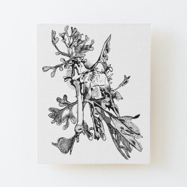 Carl the Leafy Sea Dragon Wood Mounted Print