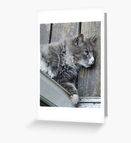 The Door Stops Here Greeting Card