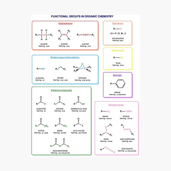 Functional groups in organic chemistry  are structural features distinguish one organic molecule from another Photographic Print
