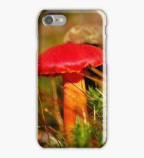 Red Cap & Orange Stalkings iPhone Case/Skin