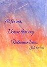 True Hope! Job 19:25 by Diane Hall